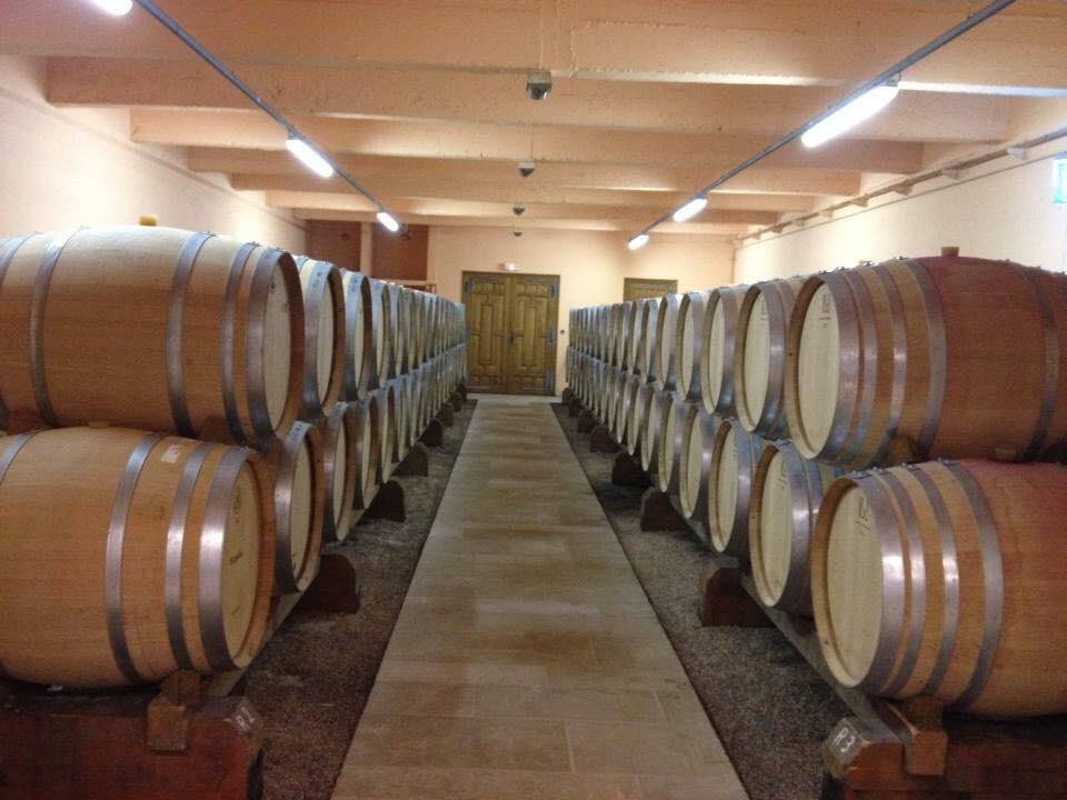 winetastingireland10.jpg